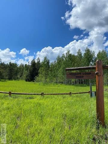 1651 Shadow Loop West, Ashton, ID 83420 (MLS #2125006) :: The Group Real Estate
