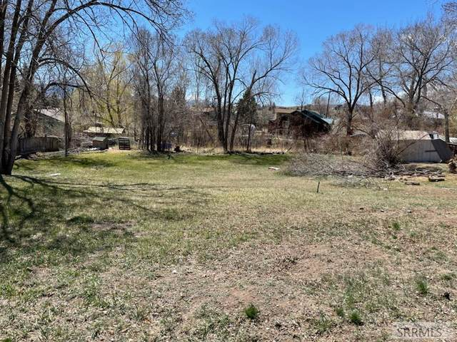TBD Roosevelt Avenue, Salmon, ID 83467 (MLS #2136008) :: Team One Group Real Estate