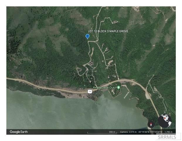 L10, B3 Shady Lane, Palisades, ID 83428 (MLS #2138059) :: Silvercreek Realty Group
