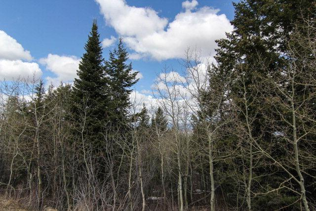 3120 Canyon Crest Drive, Victor, ID 83455 (MLS #197087) :: The Perfect Home
