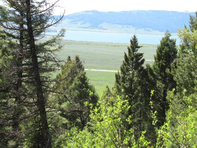 5135 Rees Drive, Island Park, ID 83429 (MLS #202541) :: The Perfect Home