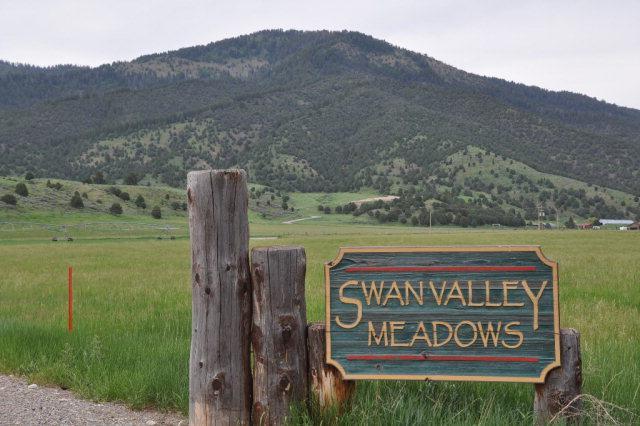 Lt 2 Swan Valley Meadows Drive - Photo 1