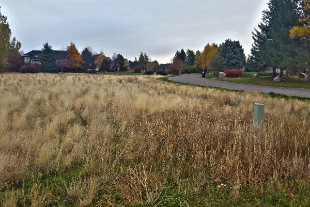 3860 E Briarwood Circle, Idaho Falls, ID 83404 (MLS #2104080) :: The Perfect Home Group