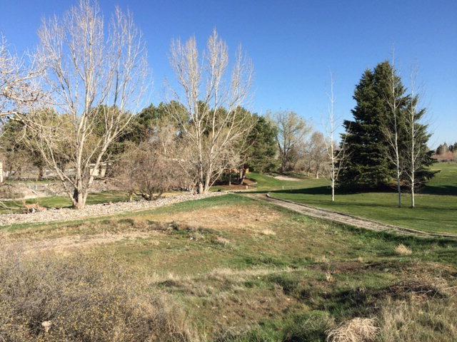 B1L4 Von Elm Drive, Blackfoot, ID 83221 (MLS #2106070) :: The Perfect Home-Five Doors