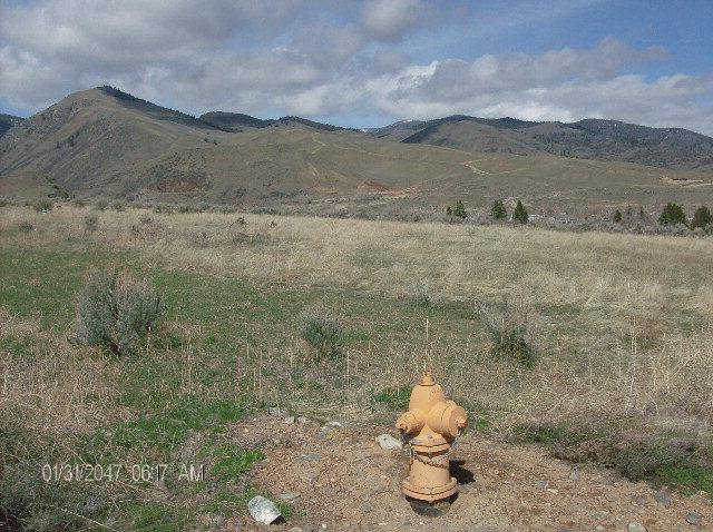 .34 AC Fullton Street, Salmon, ID 83467 (MLS #2106597) :: The Group Real Estate