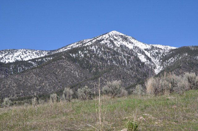TBD Hawberry, Swan Valley, ID 83449 (MLS #2107308) :: The Perfect Home-Five Doors
