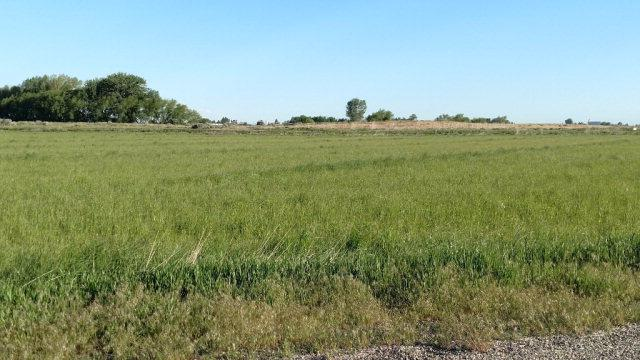Lot 3 E 1300 N, Shelley, ID 83274 (MLS #2107878) :: The Perfect Home Group