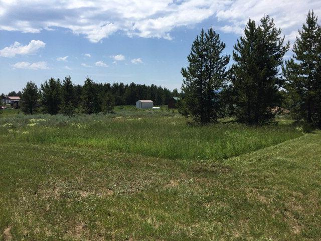 3420 Chestnut Street, Island Park, ID 83429 (MLS #2108931) :: The Perfect Home-Five Doors
