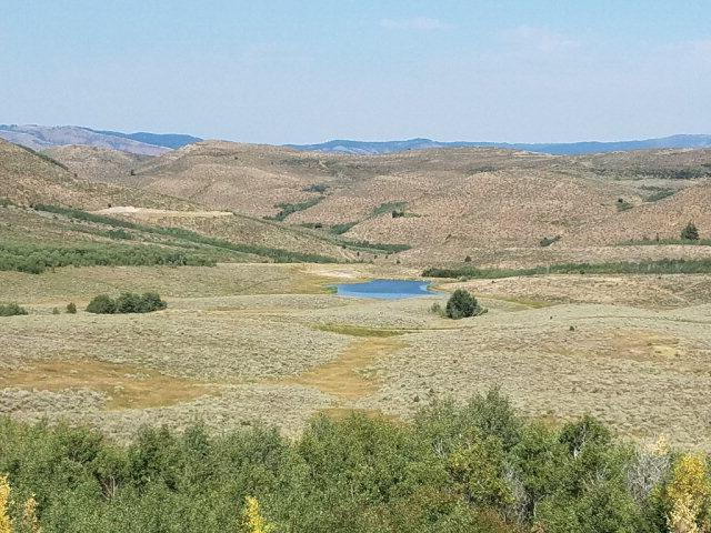 TBD Mudsprings Road, Ririe, ID 83443 (MLS #2110460) :: The Perfect Home-Five Doors