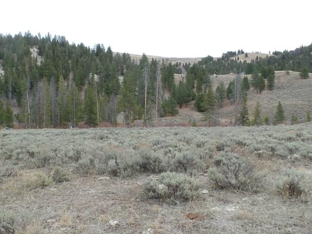 TBD3 Panther Creek Road, Salmon, ID 83467 (MLS #2112544) :: The Perfect Home