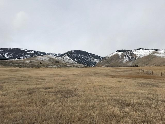 TBD Meadow Lane, Salmon, ID 83467 (MLS #2112743) :: The Perfect Home Group