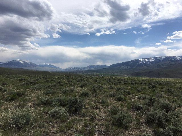 TBD Antelope Drive - Photo 1
