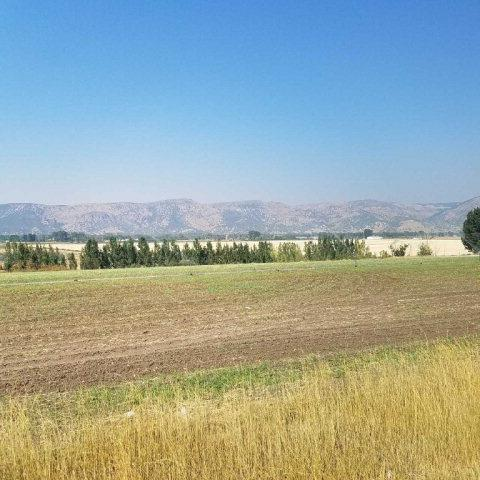 TBD Swan Valley Hwy, Ririe, ID 83443 (MLS #2114853) :: The Perfect Home-Five Doors