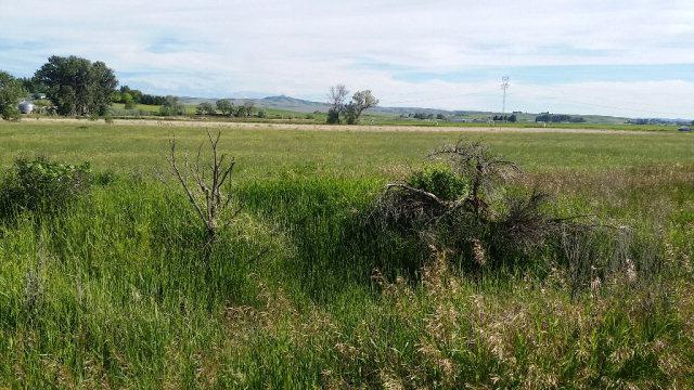 Lot 4 1250 N, Shelley, ID 83274 (MLS #2116230) :: The Perfect Home-Five Doors