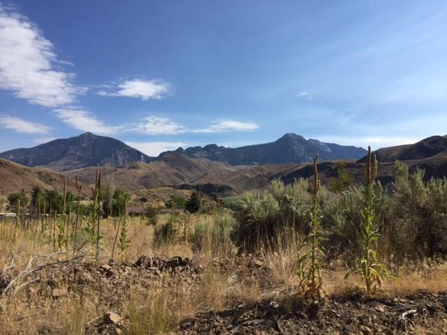 TBD Old Stage Road, Salmon, ID 83467 (MLS #2118967) :: The Perfect Home-Five Doors