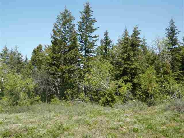 Lot 91 Huggins Circle, Lava Hot Springs, ID 83246 (MLS #2121187) :: The Perfect Home