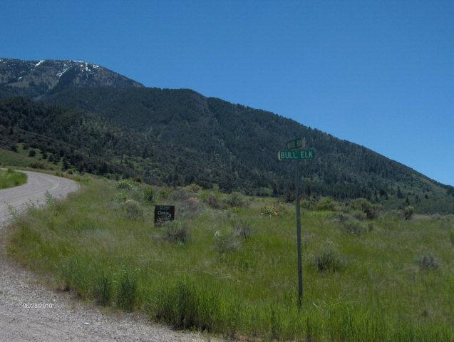 TBD Wapiti Run, Swan Valley, ID 83449 (MLS #2123217) :: The Group Real Estate