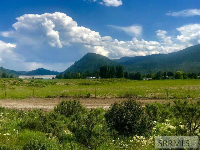 TBD Rattlesnake Road, Irwin, ID 83428 (MLS #2124106) :: The Group Real Estate