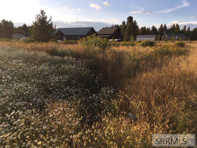 3415 Chestnut Drive, Island Park, ID 83429 (MLS #2124940) :: Team One Group Real Estate