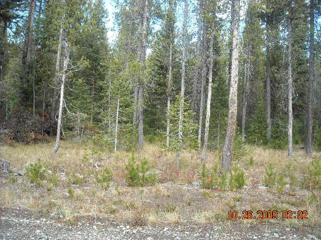 4413 Deer Crest Drive, Island Park, ID 83429 (MLS #2126144) :: Team One Group Real Estate
