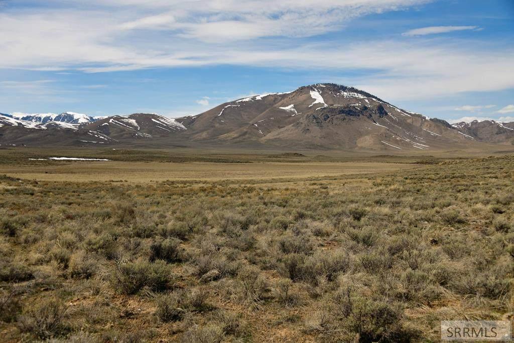 TBD Blizzard Mountain Road - Photo 1