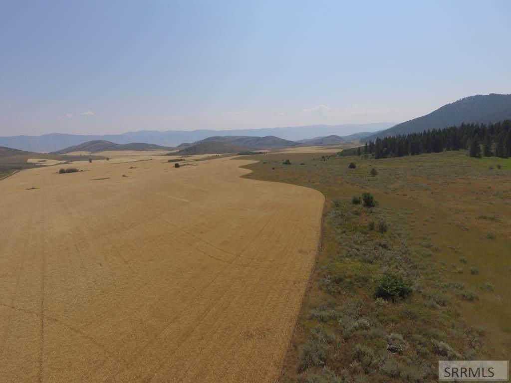 TBD Fish Creek Road - Photo 1