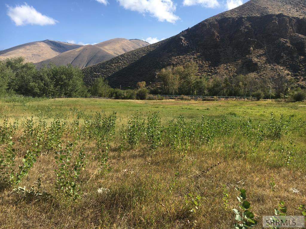 TBD Hayden Creek Road - Photo 1