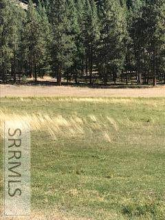 TBD N Hwy 93, GIBBONSVILLE, ID 83463 (MLS #2134362) :: The Perfect Home