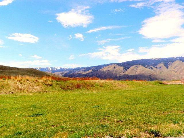 10 Black Hawk Drive, Carmen, ID 83462 (MLS #2134608) :: The Perfect Home