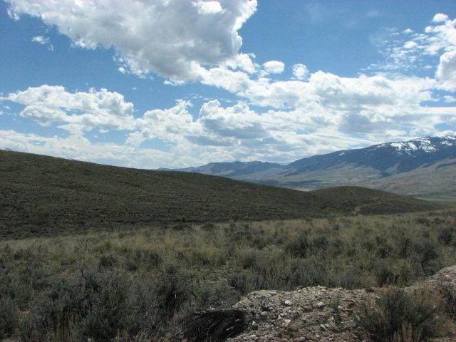 3 Black Hawk Ridge, Carmen, ID 83462 (MLS #2134611) :: The Perfect Home
