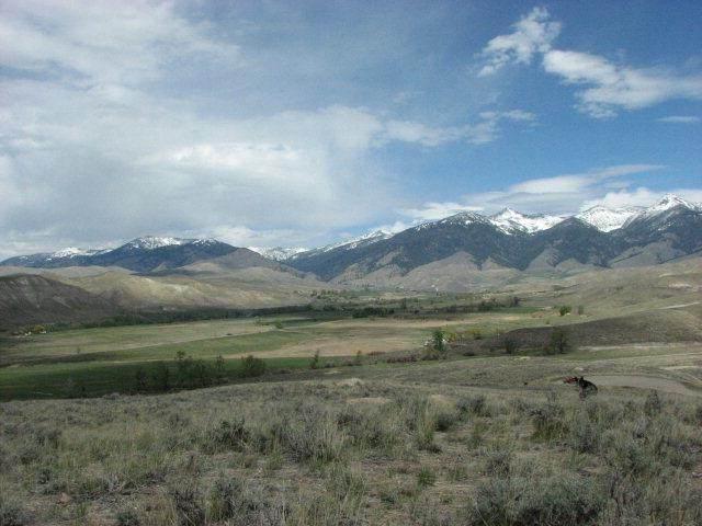 4 Black Hawk Ridge, Carmen, ID 83462 (MLS #2134612) :: The Perfect Home