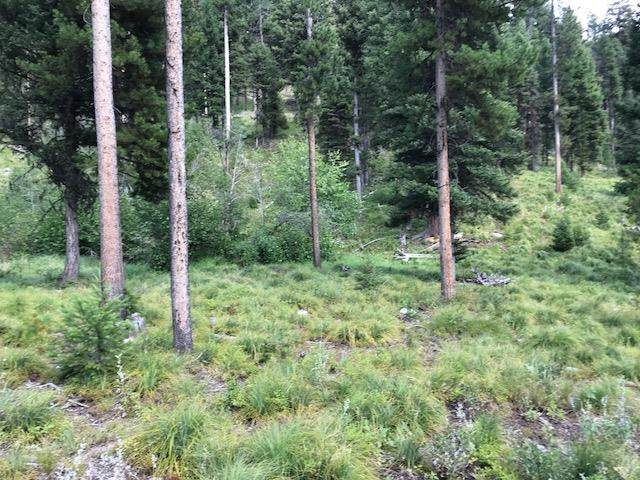 9 Kokopelli Drive, GIBBONSVILLE, ID 83463 (MLS #2135769) :: The Perfect Home