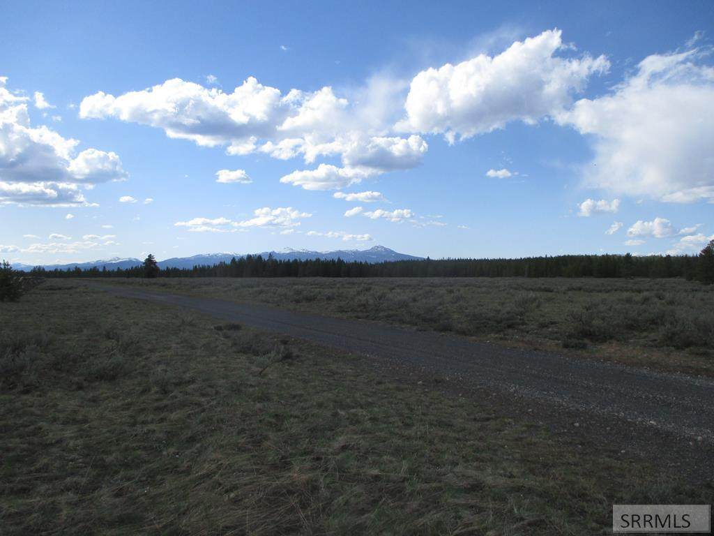 4395 Pine Grouse Road - Photo 1