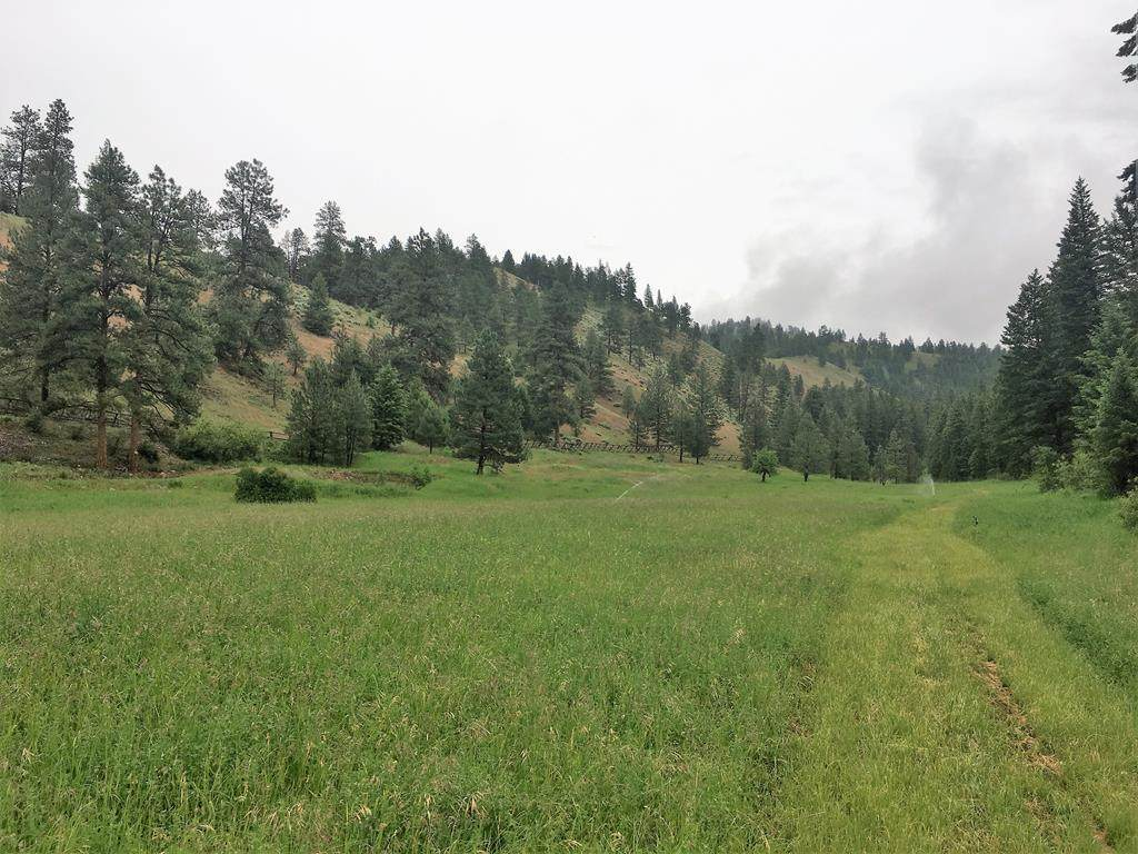 999 Dry Gulch Road - Photo 1