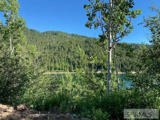Lot 4 Why Worry Lane, Swan Valley, ID 83449 (MLS #2137511) :: The Perfect Home