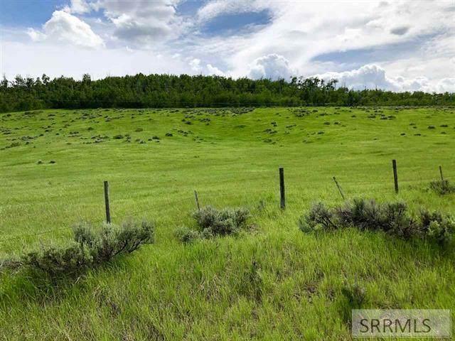 Lot 6 Henry's Cutoff Road, Soda Springs, ID 83276 (MLS #2139426) :: Team One Group Real Estate