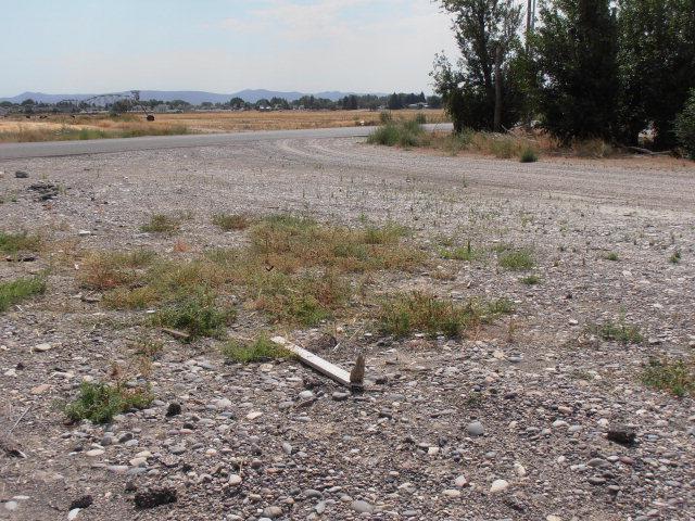 2401 Teeples Drive, Blackfoot, ID 83221 (MLS #187829) :: The Perfect Home-Five Doors