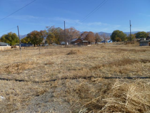818 Lemhi Avenue, Salmon, ID 83467 (MLS #2118271) :: The Perfect Home Group