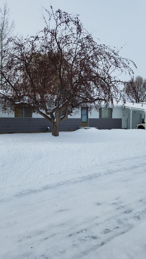 695 N 6th W, St Anthony, ID 83445 (MLS #2119303) :: The Perfect Home Group