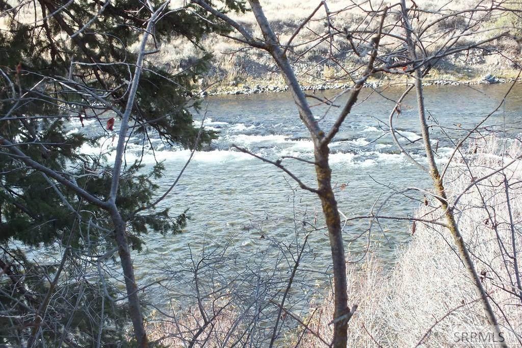 3533 Fall River Road - Photo 1