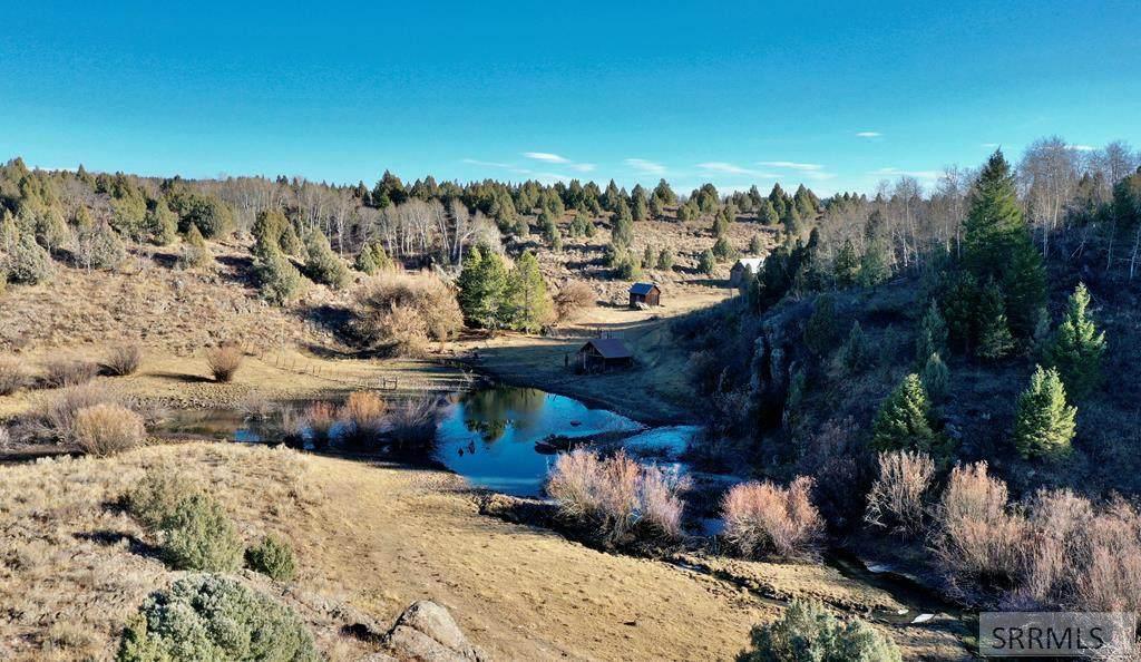 Ranch Sadorus Hill Road - Photo 2