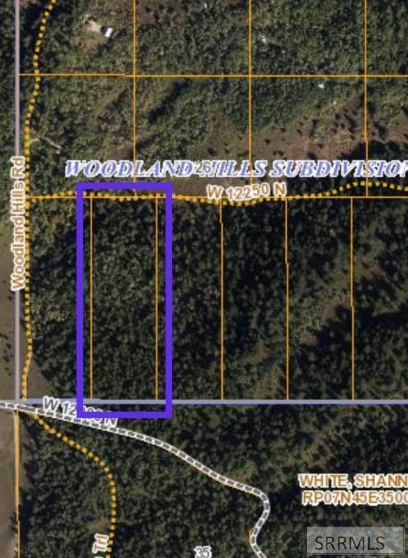 415 W 12250 N, Tetonia, ID 83452 (MLS #2136498) :: Team One Group Real Estate