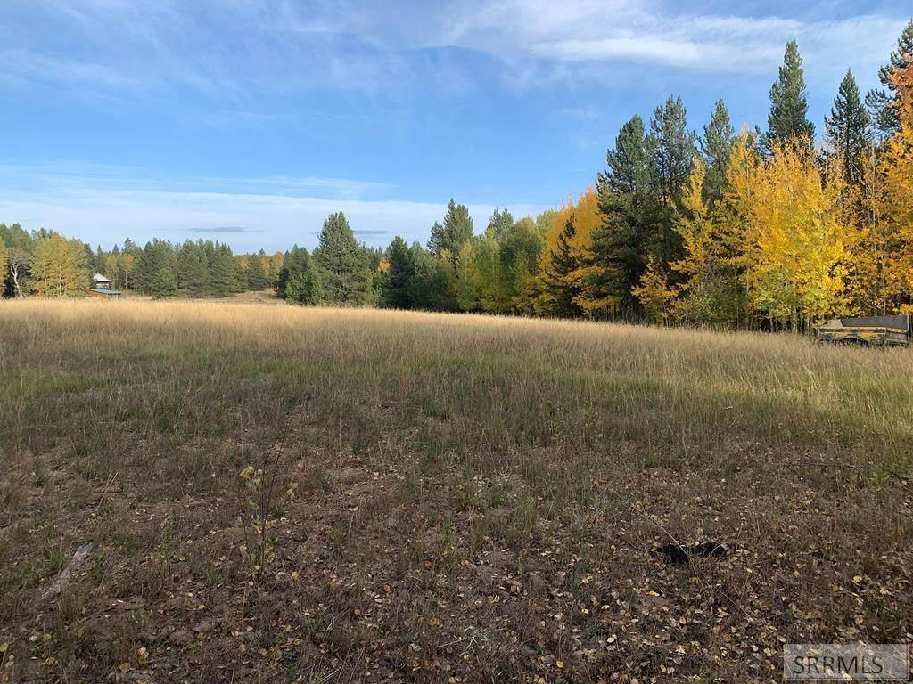 4503 Elk Loop Road - Photo 1