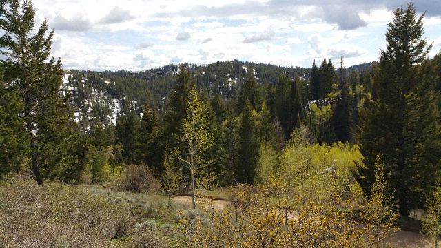 TBD Long Branch Road, Firth, ID 83236 (MLS #2106309) :: The Perfect Home-Five Doors