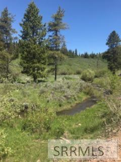 TBD Sellers Creek Road, Firth, ID 83236 (MLS #2116453) :: The Perfect Home