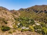 29305 Modjeska Canyon Road - Photo 69
