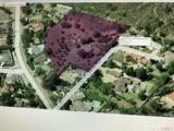 10262 Crawford Canyon Road - Photo 10