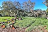 29568 Chualar Canyon Road - Photo 30
