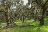 46 Camino De Travesia - Photo 8