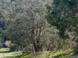 0 Pine Drive - Photo 4